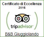trip_2016